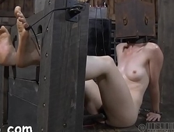 Four beauties inside petite cage